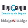Meprosegur, delegación independiente de Recoletos, desarrolla el departamento de Seguros de la Asesoría Hidalgo & Hidalgo