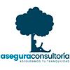 Asegura Consultoría